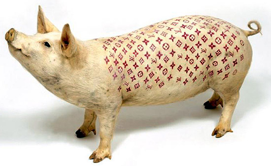 tattoo pig. Tattoo fashion. . . за прасета